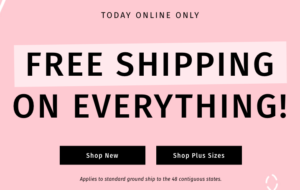 picture relating to Charlotte Russe Printable Coupons named Charlotte Russe: Totally free Delivery - These days Basically! Becs Discounts